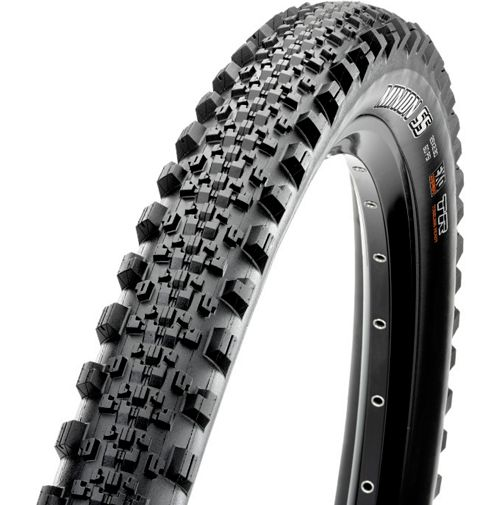 Picture of Maxxis Minion SS MTB Tyre - EXO - TR